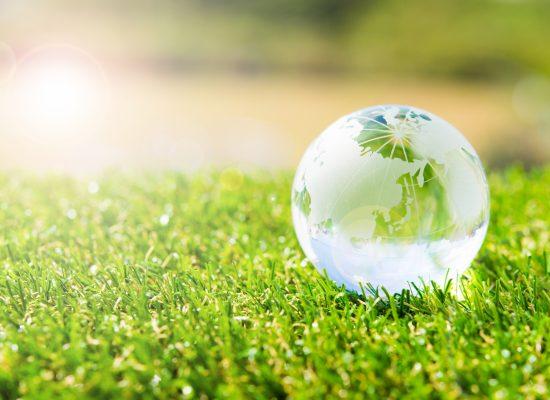 地球と草原のイメージ画